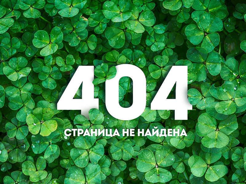 Дизайн страницы 404  ( 404 page design ) 1